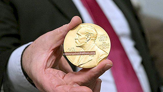 Nobel'in iradesi