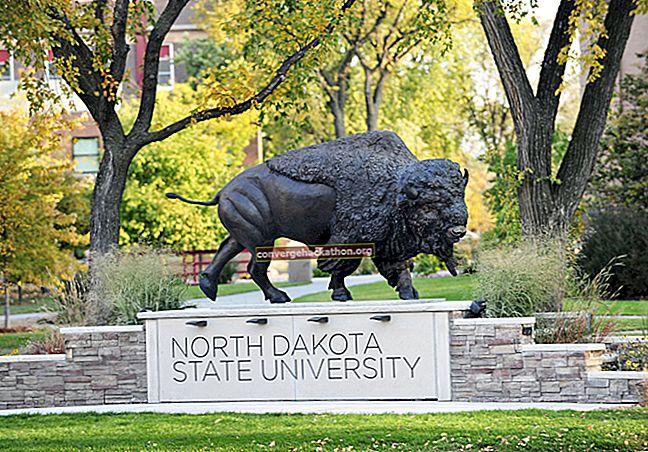Държавен университет в Северна Дакота