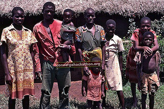 Benue-Kongo-språk