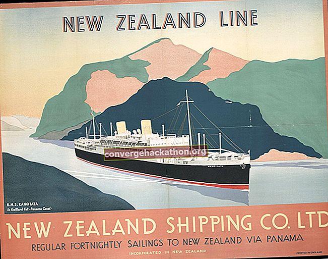 Nya Zeeland Company