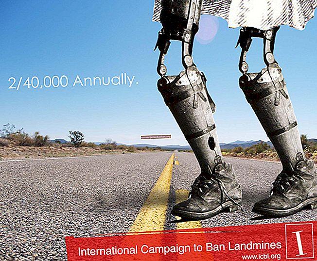 Міжнародна кампанія з заборони наземних мін