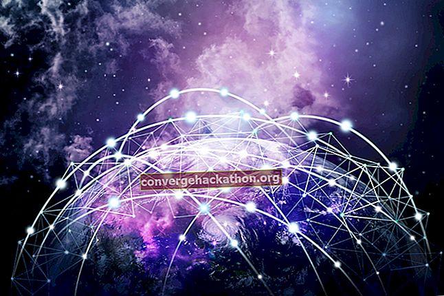 Det breda nätet